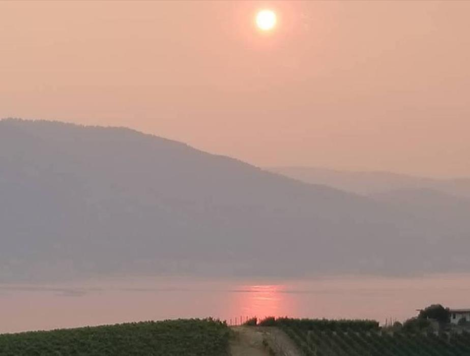 View of heavy wildfire smoke blanketing Okanagan Lake at sunset.